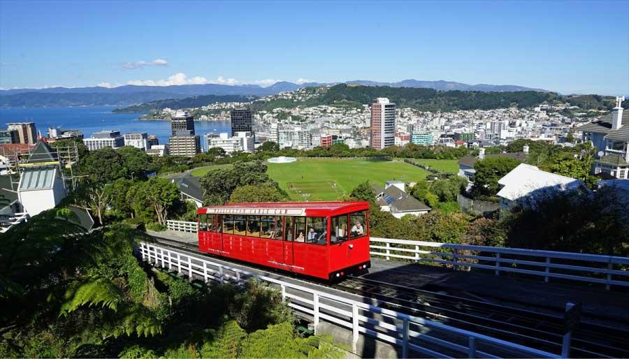 自然溢れるニュージーランドでのんびりと留学